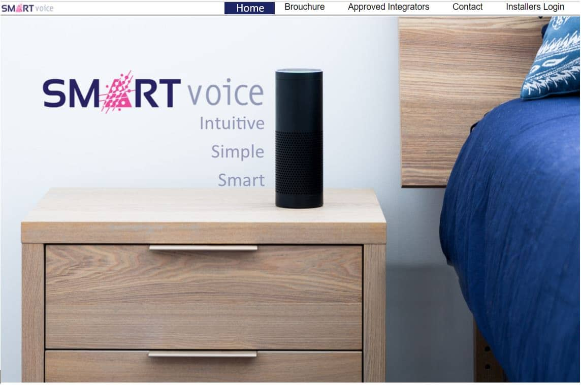 Smart voice great design